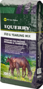 Equerry Stud and Yearling Mix