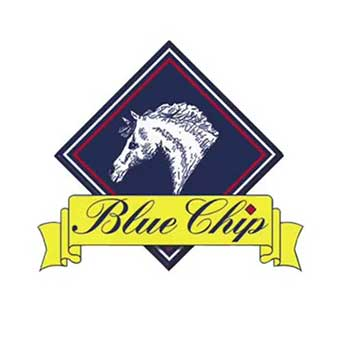 Blue Chip Horse Feeds